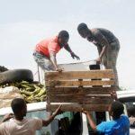 Wiki Loves Africa 2017 célèbre l'Afrique au travail